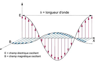 Onda elettromagnetica Fonte: dalla rete